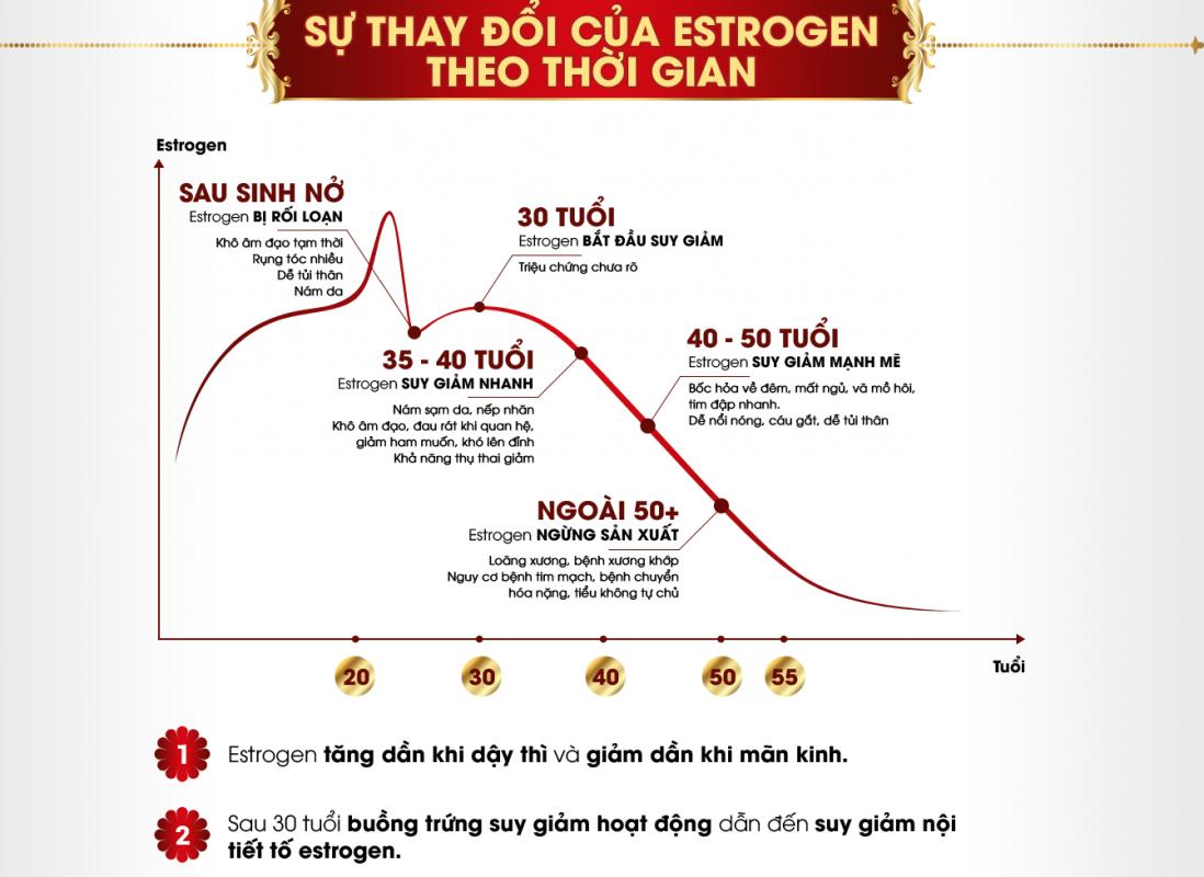 Sự thay đỏi của Estrogen theo thời gian