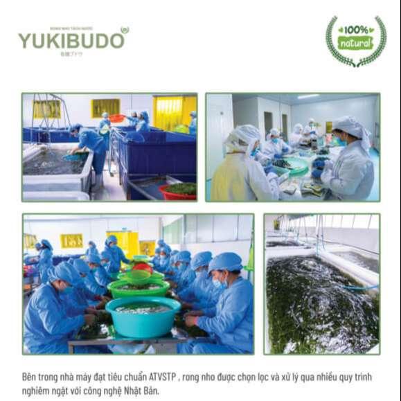 [Update 7/2021] Rong nho Yukibudo có tốt không? Giá bao nhiêu 1 hộp? Mua ở đâu chính hãng? 16