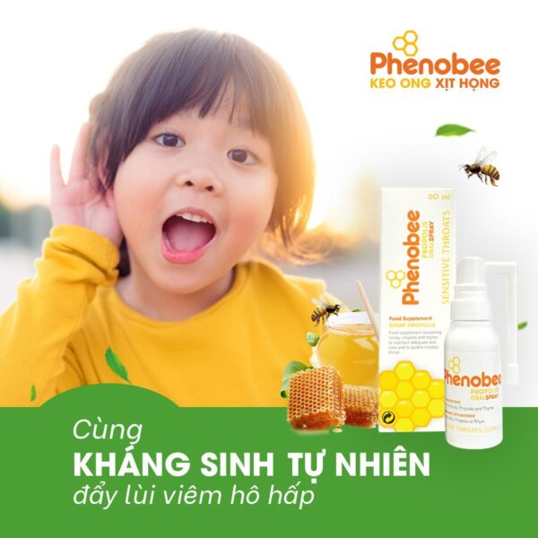 Keo con ong xịt họng Phenobee 1